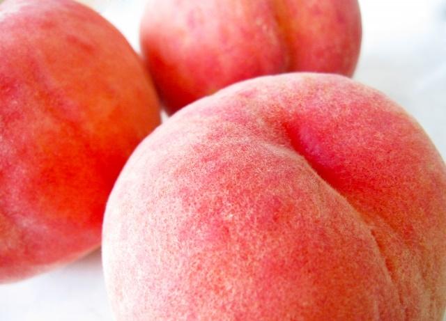 桃の様な美尻