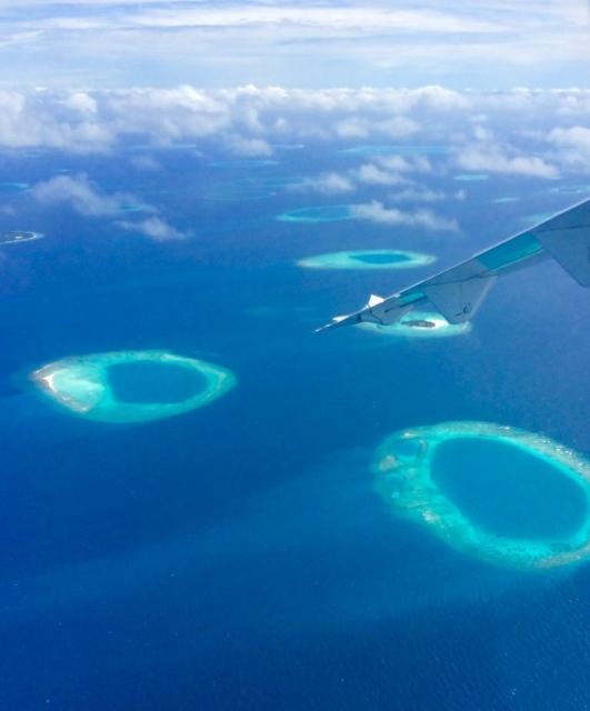 サンゴ環礁が環状紅斑に似てる