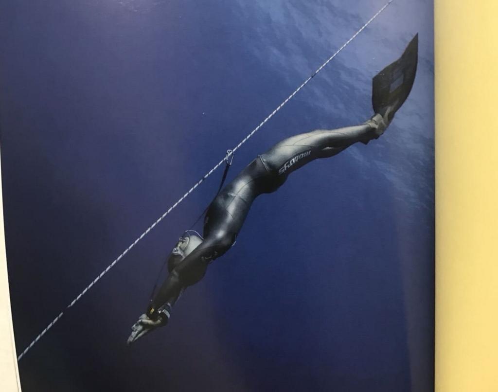 フリーダイビング スタート 深海へ