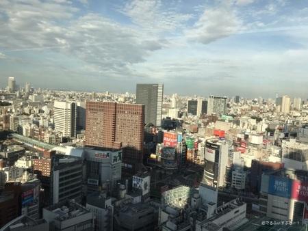 新宿エルタワー28階からの眺望