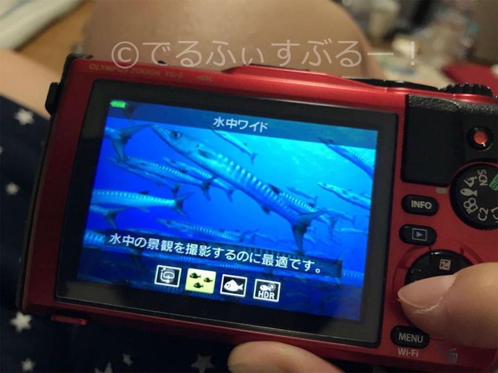 ワイドモード 地形や魚群を撮るのに最適