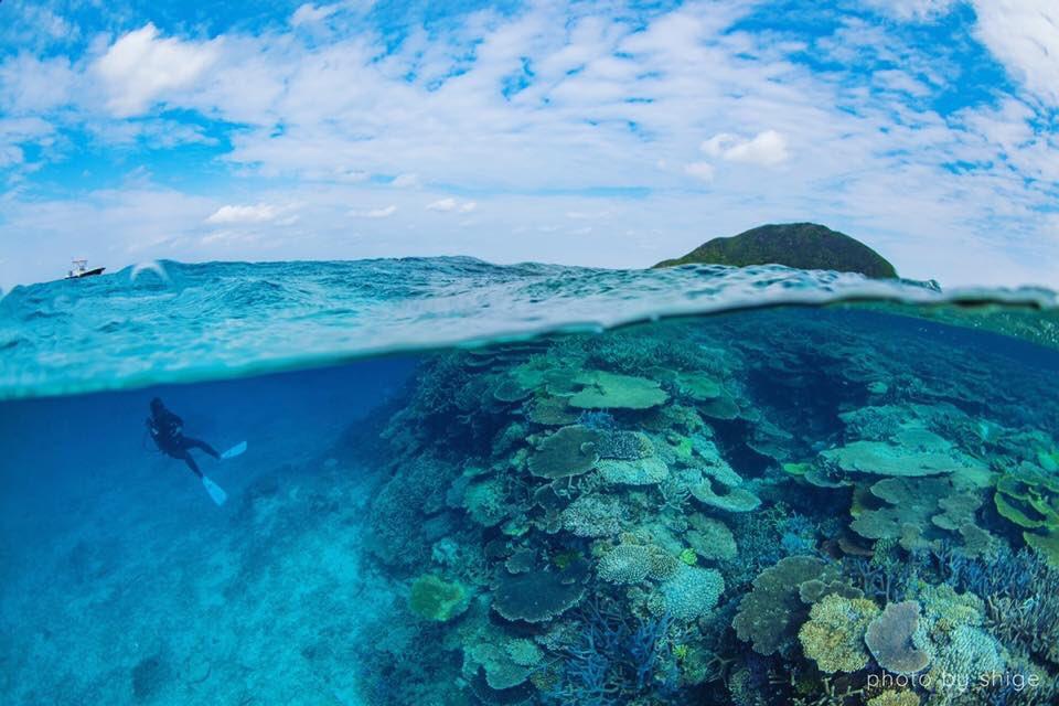 伊平屋島は珊瑚の最後の楽園