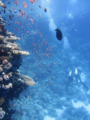 沖縄ならこんな景色が見れるかも