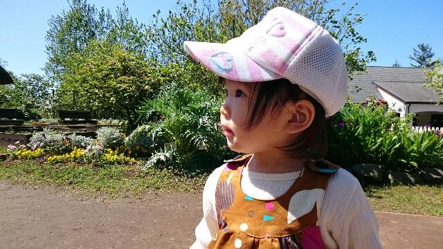 f:id:ryamamama:20160505162640j:image