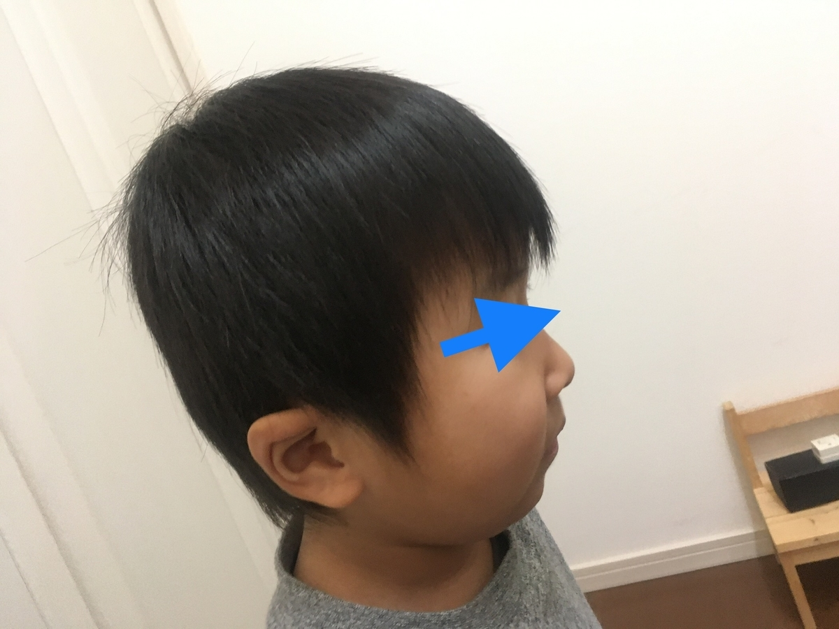 f:id:ryo-oD:20200103170730j:plain