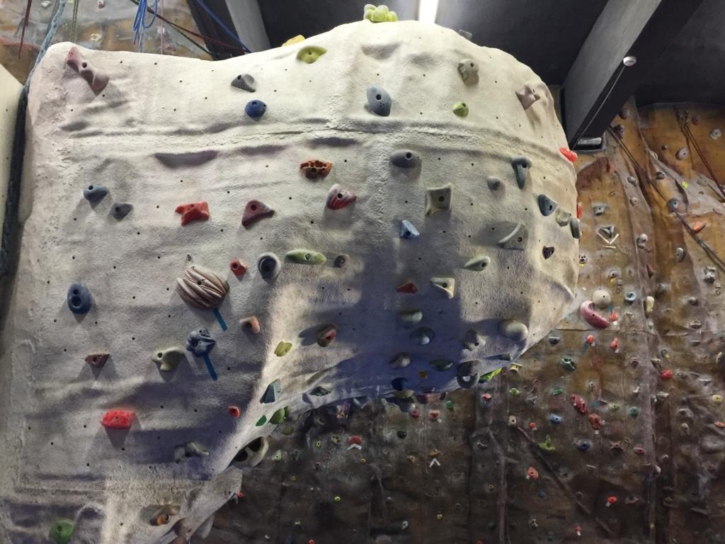 gym113