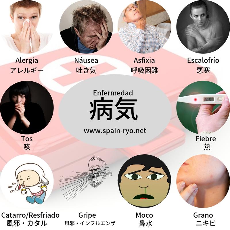 f:id:ryo1192:20190108093157j:plain