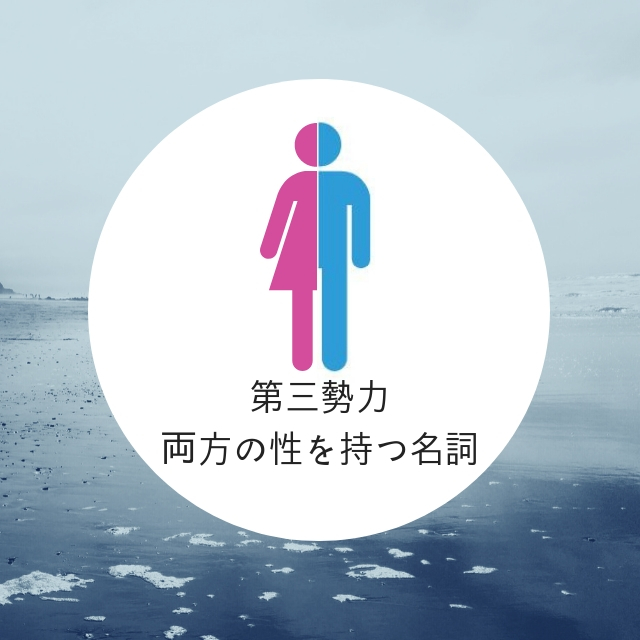 f:id:ryo1192:20190307084937j:plain