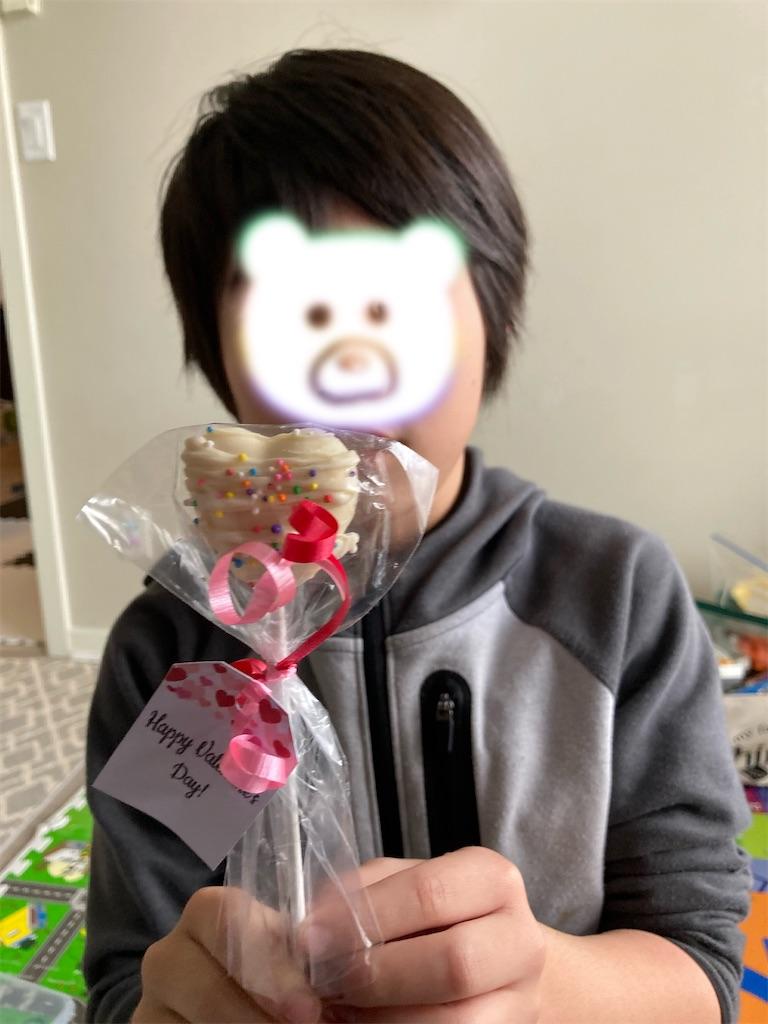 f:id:ryo27apl:20210213134512j:image
