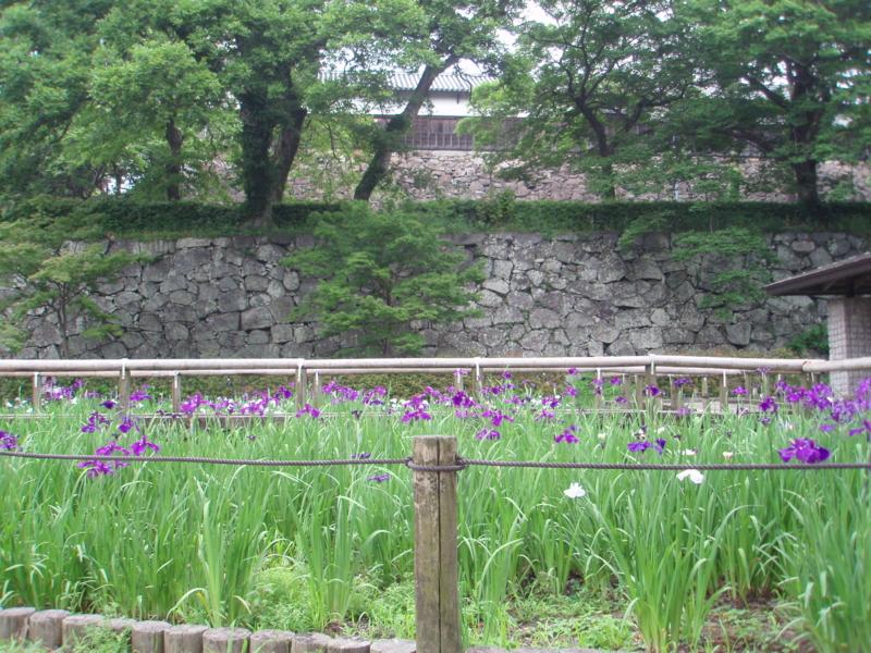 f:id:ryo326:20110605113551j:image