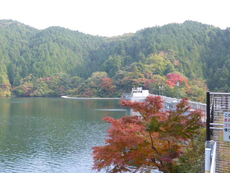 f:id:ryo326:20121109145331j:image
