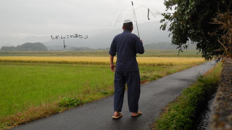 f:id:ryo326:20141101135616j:image
