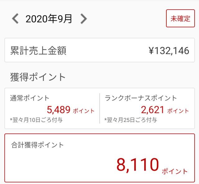 f:id:ryo_009:20201002000512j:plain