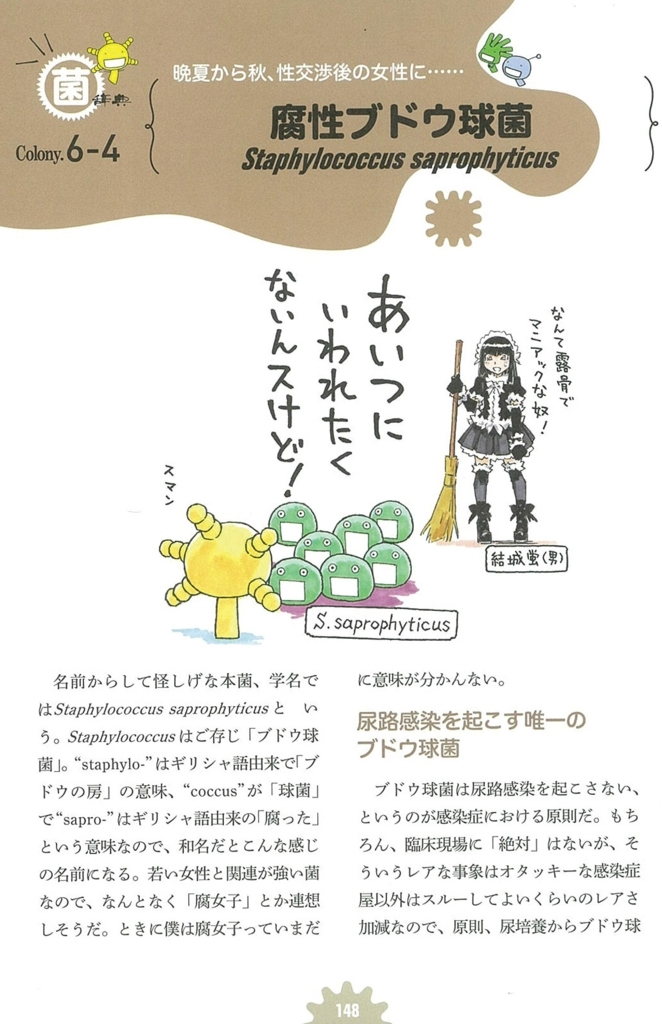 f:id:ryo_72:20170802031216j:plain