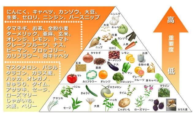 f:id:ryo_72:20180616014140j:plain