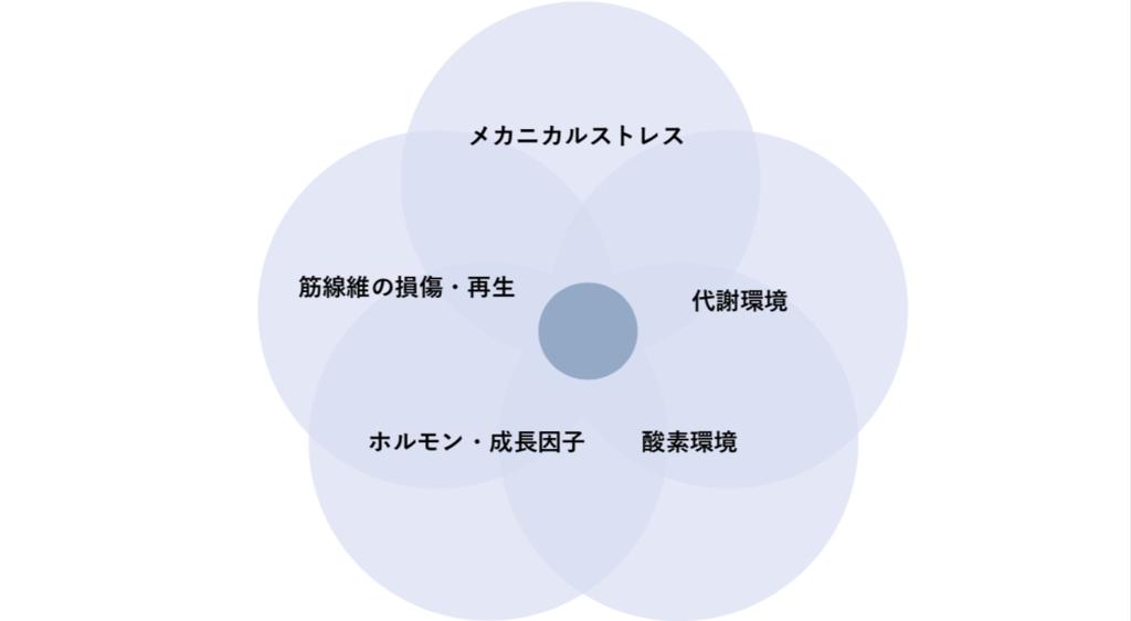 f:id:ryo_72:20190221012912p:plain