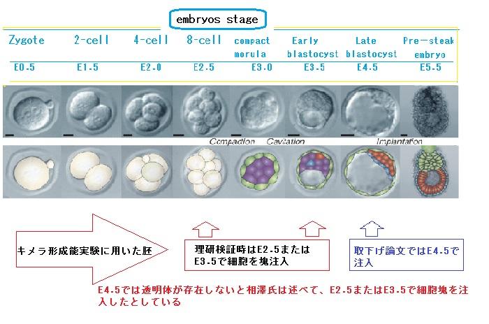 f:id:ryobu-0123:20161008234847j:plain
