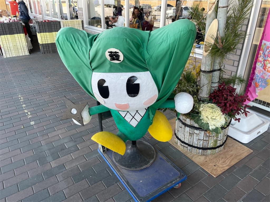 f:id:ryohei-n-0817:20210110232627j:image