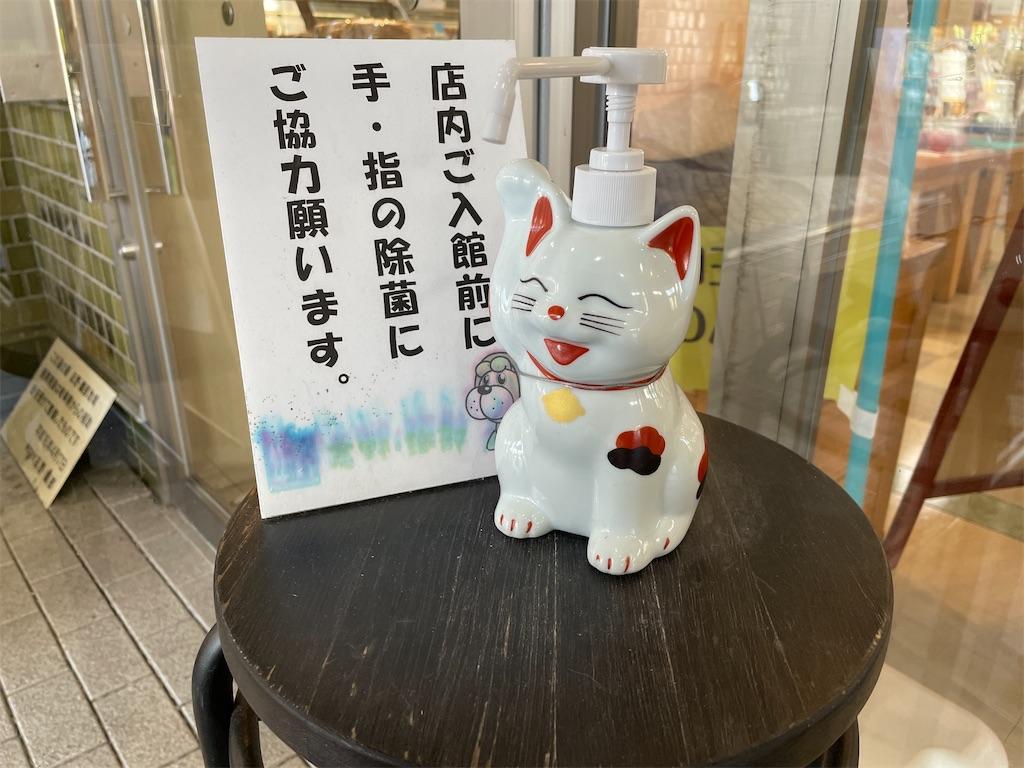 f:id:ryohei-n-0817:20210228153711j:image