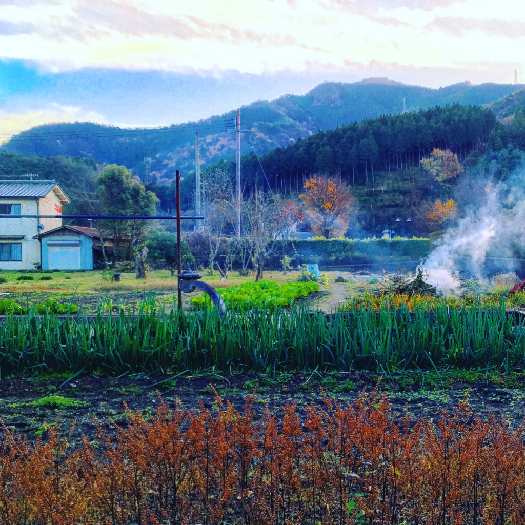 f:id:ryohei1129:20161204004740j:plain