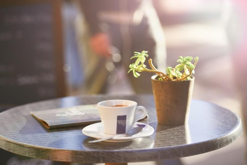 コーヒーとプラント