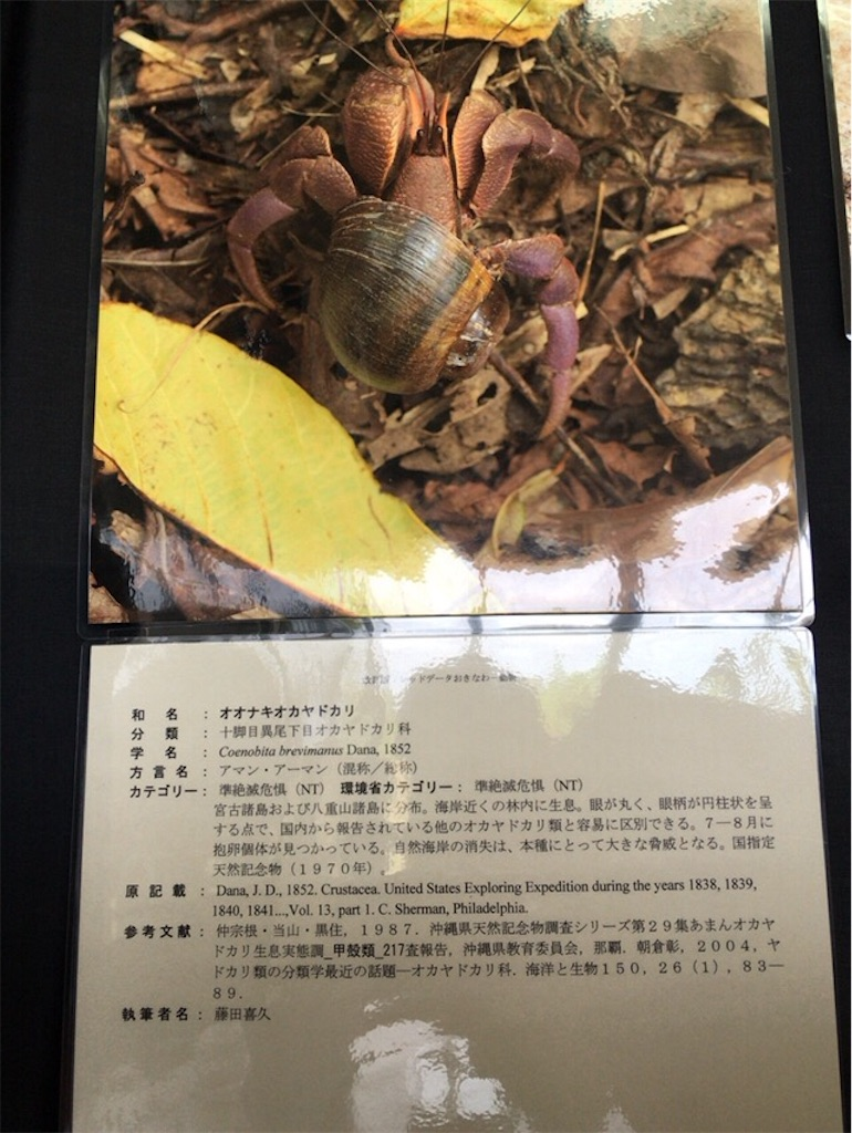 f:id:ryokichisan:20170824132234j:image