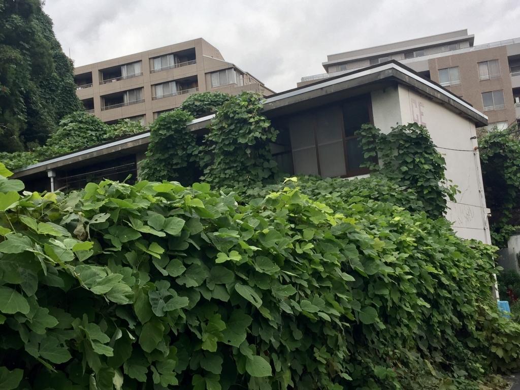 f:id:ryokuji:20161025184837j:plain