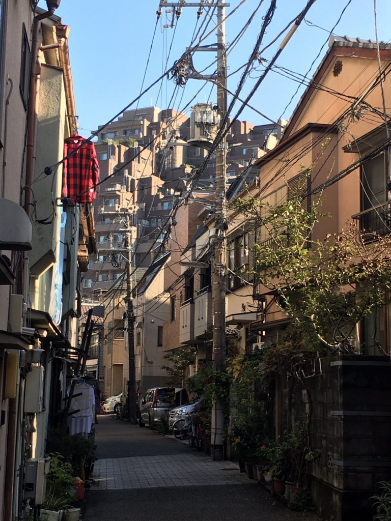 f:id:ryokuji:20170102000421j:plain