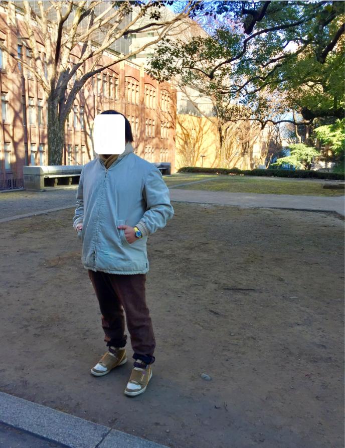 f:id:ryokuji:20170207000602p:plain