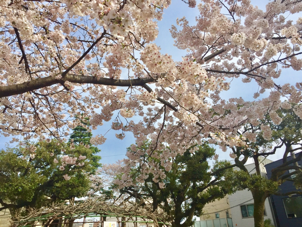 f:id:ryokuji:20170502032956j:plain