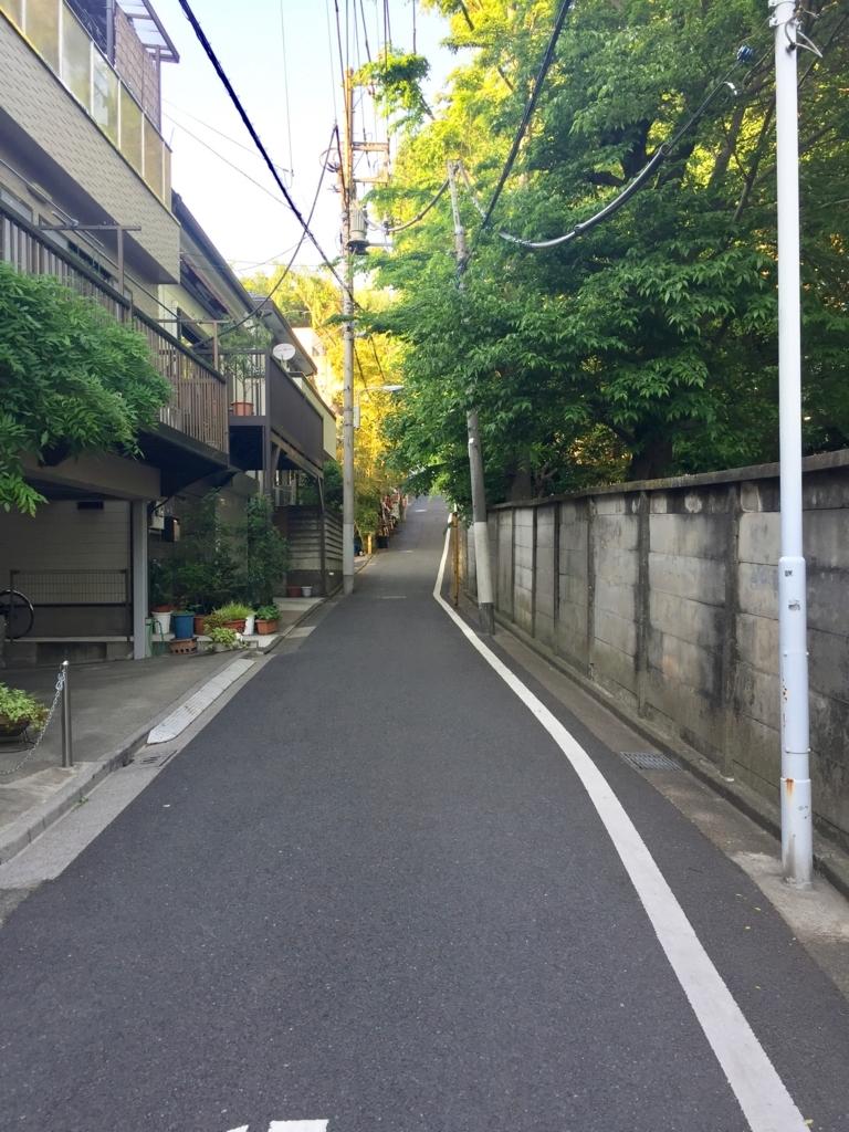 f:id:ryokuji:20170606215705j:plain