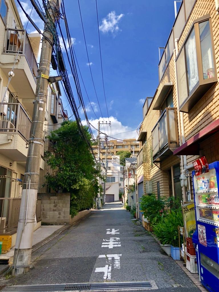 f:id:ryokuji:20180526012153j:plain