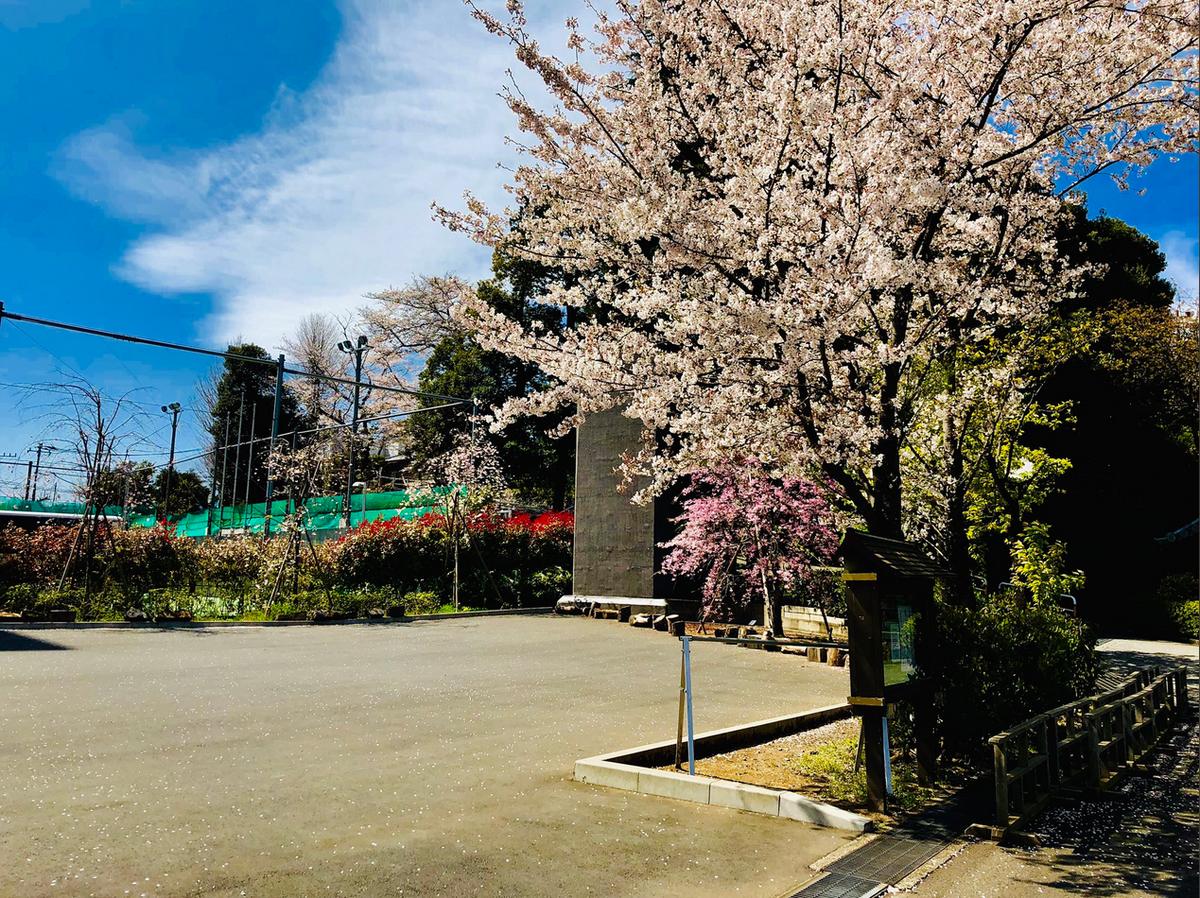 f:id:ryokuji:20190407120513p:plain