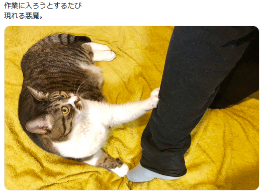 f:id:ryokuji:20191006233303p:plain