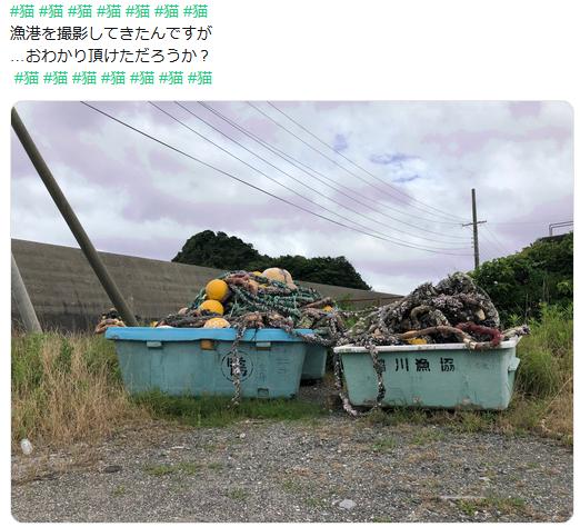 f:id:ryokuji:20191006234109p:plain