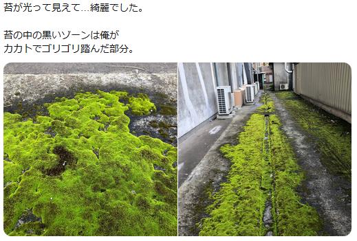 f:id:ryokuji:20191006234424p:plain