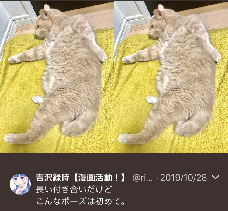 f:id:ryokuji:20191230225646j:plain