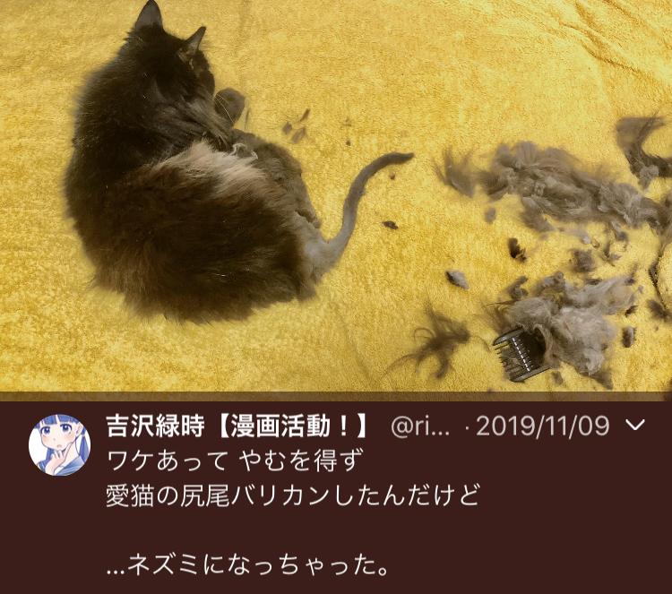 f:id:ryokuji:20191230230111j:plain