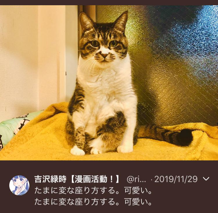 f:id:ryokuji:20191230230327j:plain