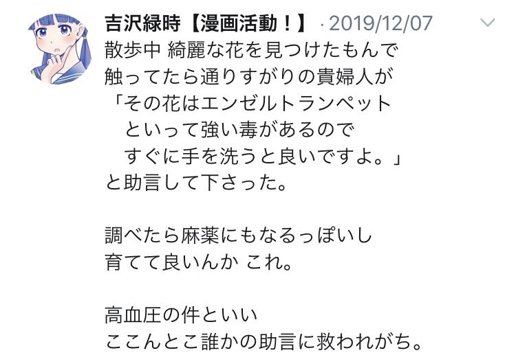 f:id:ryokuji:20191230230510j:plain