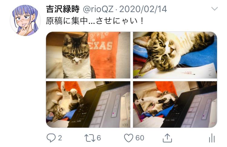 f:id:ryokuji:20200512185533j:plain