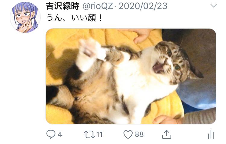 f:id:ryokuji:20200512185759j:plain