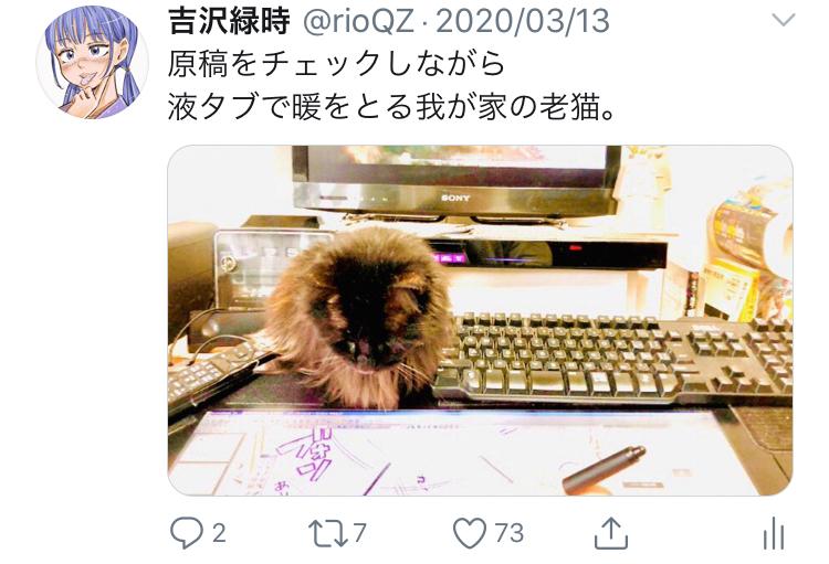 f:id:ryokuji:20200512190558j:plain