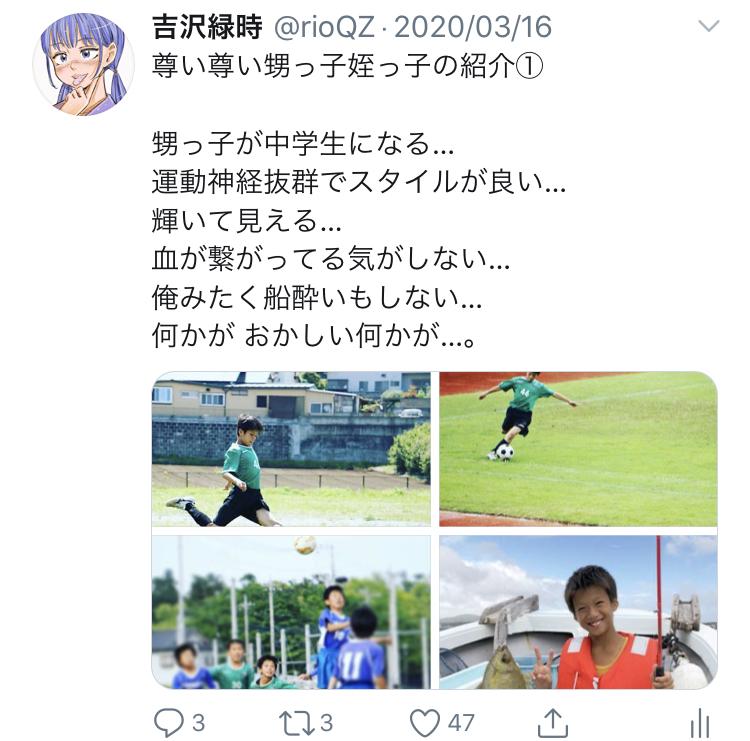 f:id:ryokuji:20200512190739j:plain
