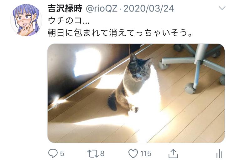 f:id:ryokuji:20200512191104j:plain