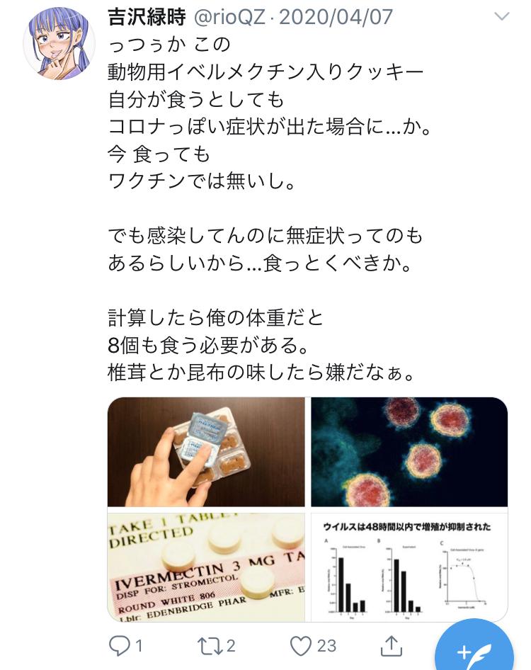 f:id:ryokuji:20200512191424j:plain