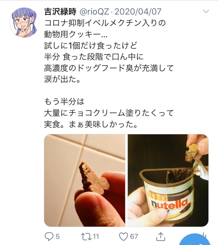 f:id:ryokuji:20200512191440j:plain
