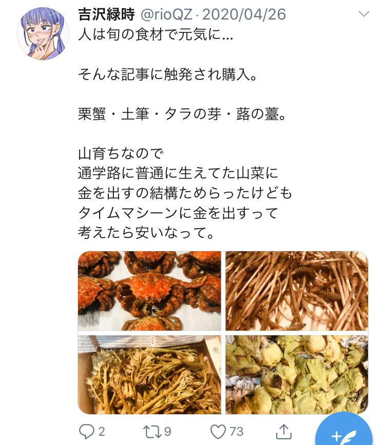 f:id:ryokuji:20200512191934j:plain
