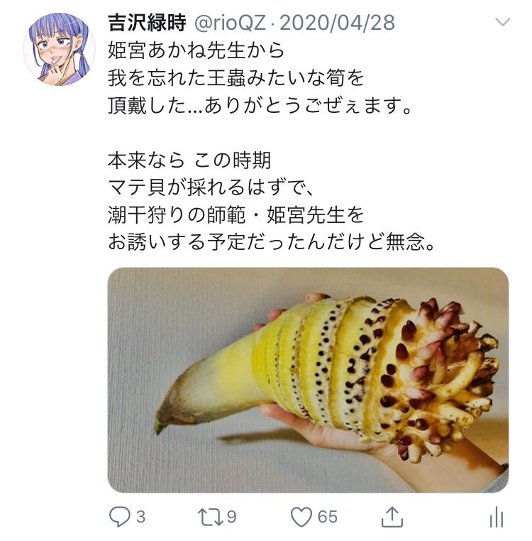 f:id:ryokuji:20200512191946j:plain