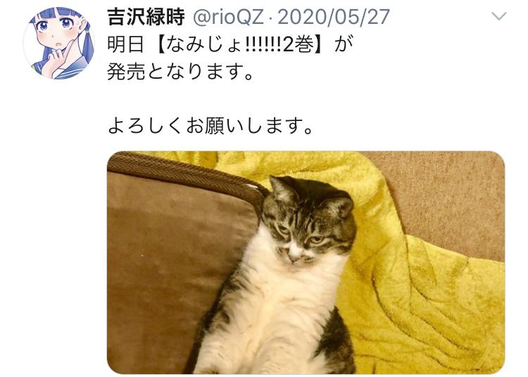 f:id:ryokuji:20201123155448j:plain